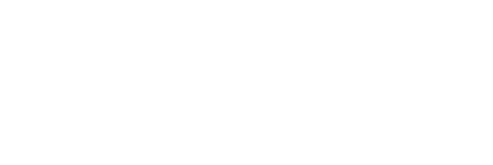 FranchiseKing